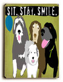 Sitstaysmile group
