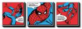 Spiderman - Spider Sense Tableau multi toiles