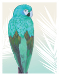 Tropical Bird 1