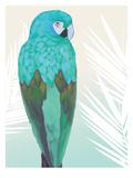 Tropical Bird 1 Reproduction d'art par Marco Fabiano