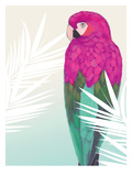 Tropical Bird 2