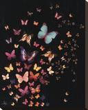 Midnight Butterflies Tableau sur toile