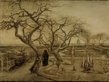 Winter Garden  March 1884