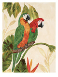 Tropical Green Pair