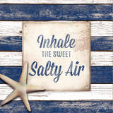 Salty Air Reproduction d'art par Elizabeth Medley