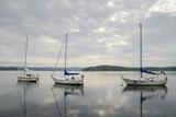 Temiscouata Sur Le Lac  Quebec Province  Canada  North America