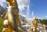 Golden Statues and Fountains of the Grand Cascade at Peterhof Palace  St Petersburg  Russia