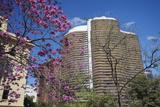 Niemeyer Building  Belo Horizonte  Minas Gerais  Brazil  South America
