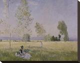 Summer  1874