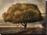 Autumnal Landscape Tableau sur toile par David Winston