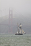A Two Masted Schooner Sails under the Golden Gate Bridge