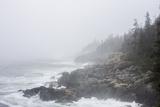 The Atlantic Ocean Crashing on a Foggy, Rocky, Tree-Lined Shore Papier Photo par Jonathan Irish