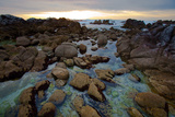Tide Pools at Sunset in Monterey  California