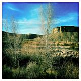 Aspens  Sage and a Butte Outside of Kremling