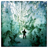 An Eight Year Old Boy Skis Through Snowy Trees