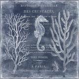 The Deep Blue Sea II Reproduction d'art par Deborah Devellier
