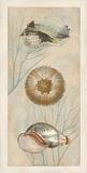 Ocean Companions II Reproduction d'art par Deborah Devellier