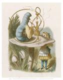 Alice Mushroom Reproduction d'art