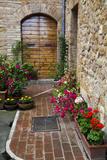 Doorway with Flowers  Pienza  Tuscany  Italy