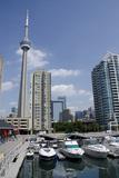 Lake Ontario City Skyline View from Marina  Toronto  Ontario  Canada