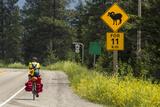Biking  Adventure Cycling Glacier Waterton Tour  Fernie  British Columbia