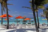 Umbrellas and Shade at Castaway Cay  Bahamas  Caribbean