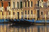 Gondolas Along the Grand Canal in Venice  Italy