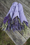 Wrapped Bouquets of Dried Lavender at Lavender Festival  Sequim  Washington  USA