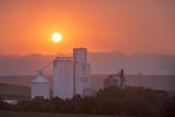 Foggy Sunrise over Grain Elevator  Farm  Kathryn  North Dakota  USA