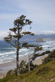 View of Haystack Rock and Cannon Beach  from Highway 101  Oregon  USA