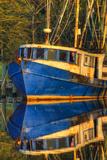 Shrimp Boat Docked at Harbor, Fishing, Apalachicola, Florida, USA Papier Photo par Joanne Wells