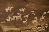 Ute Petroglyphs  Arches National Park  Utah  USA