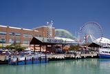 Navy Pier Along the Shores of Lake Michigan  Chicago  Illinois