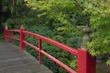 Red Bridge  Kubota Japanese Garden  Renton  Washington  USA