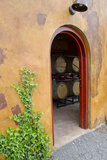 Anyela's Vineyard Winery  Wine Cellar  Skaneateles  New York  USA