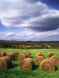 Farm Hay Bales in Field  Westmore  Vermont  USA