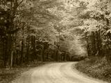 Road Through Autumn Trees  Green Mountain National Forest  Vermont  USA