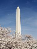 View of Washington Monument  Washington DC  USA