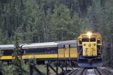 Alaska Railroad Train  Denali National Park  Alaska  USA