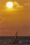 Sunset  Windsurfing  Ocean  Maui  Hawaii  USA