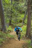 Mountain Biking the Whitefish Trail Near Whitefish  Montana  USA