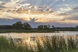Sunrise over Backwater of the Milk River Near Glasgow  Montana  USA
