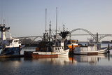 Fishing Boats with Yaquina Bay Bridge in Background  Newport  Oregon  USA