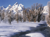 Grand Teton National Park Covered in Snow  Wyoming  USA