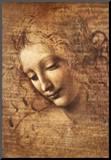 Leonardo Da Vinci (Female Head  La Scapigliata) Art Poster Print Art Poster Print