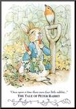 Beatrix Potter Tale Peter Rabbit Art Print POSTER cute