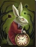 Levin White Rabbit