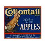 Warshaw Collection of Business Americana Food; Fruit Crate Labels  Farwest Fruit Co