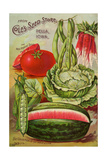 Seed Catalog Captions (2012): Cole's Seed Store  Pella  Iowa  Garden  Farm and Flower Seeds  1896