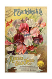 Seed Catalog Captions (2012): F Barteldes and Co Price List and Descriptive Catalogue